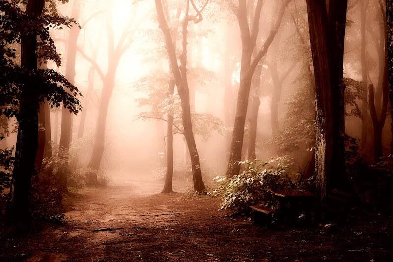 Camino a las Cascadas del Cinca